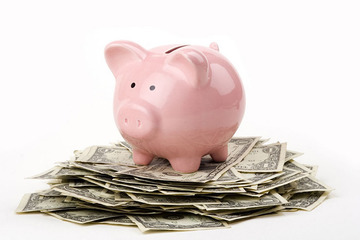 Small pic piggy on money1