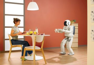 Small pic hp robot